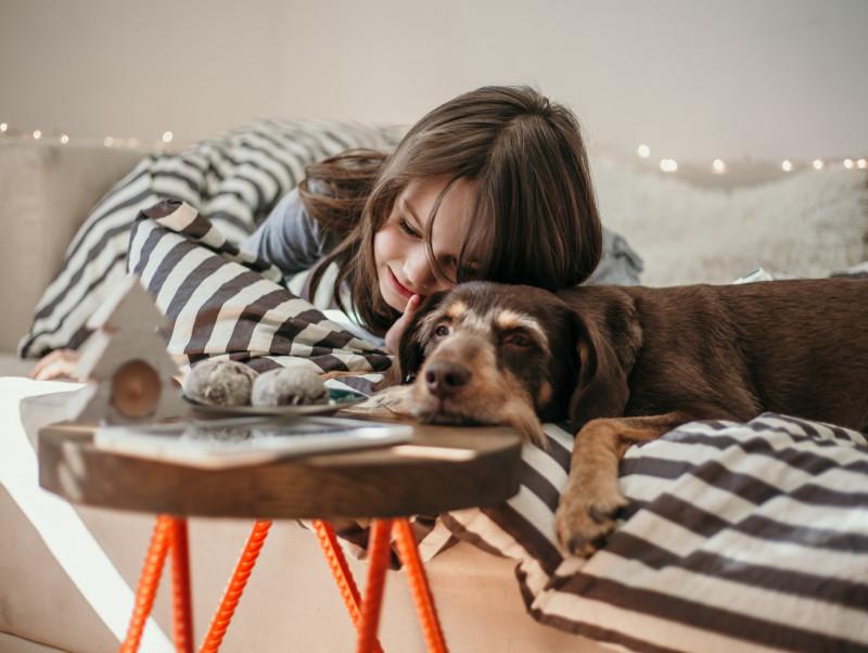 過ごした時間は宝物!飼い主が語る「シニア犬」との暮らしが教えてくれること