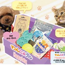 """ごほうびにぴったり!愛犬、愛猫の""""うれしい""""を詰め込んだ 「わんにゃブルHappybox」って?"""