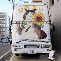 まるで猫の幼稚園!2階建てバスを改装した保護猫カフェ『ひだまり号』の取り組み
