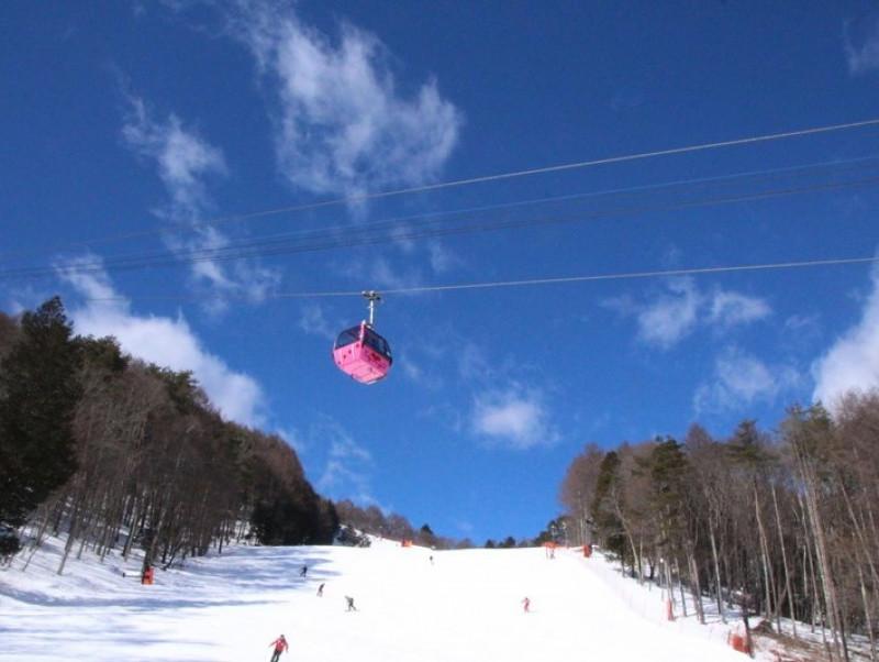 ルールを守って楽しく滑ろう!愛犬と一緒に行ける「スキー場」4選