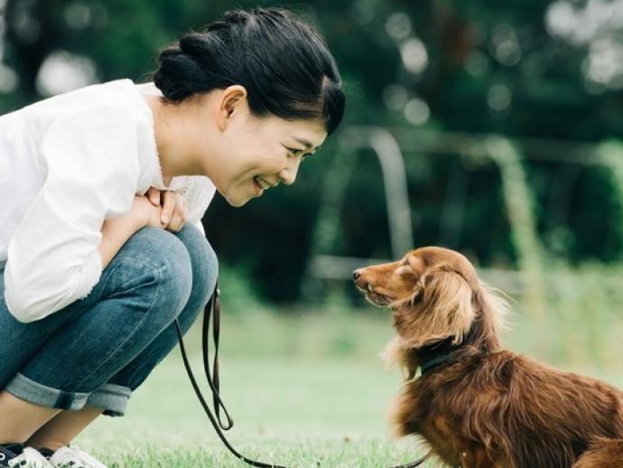 獣医師が感心した!飼い主さんの「愛犬への気遣い」~第1弾~