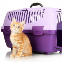 非常時にも役立つ!春のお出かけにおすすめな「猫用キャリーバッグ」3選