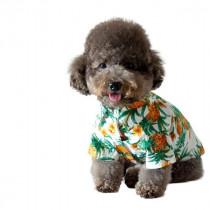 小型犬の衣替えの参考に!春夏用おすすめ『ドッグウェア』3選
