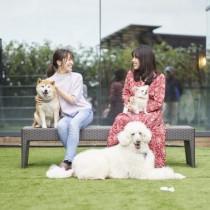 愛犬と泊まれる温泉ホテル!『ペット&スパホテル伊豆高原』がグランドオープン