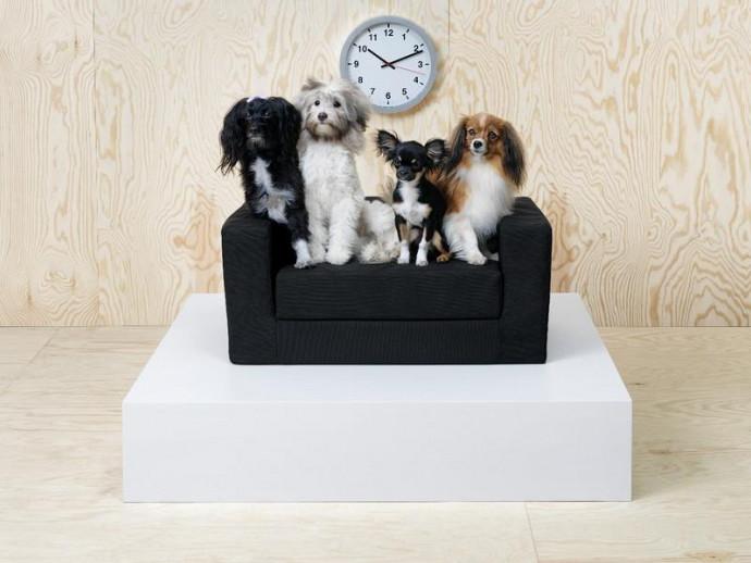 おしゃれ好きな愛犬&愛猫も納得!?『イケア』のペット用品5選