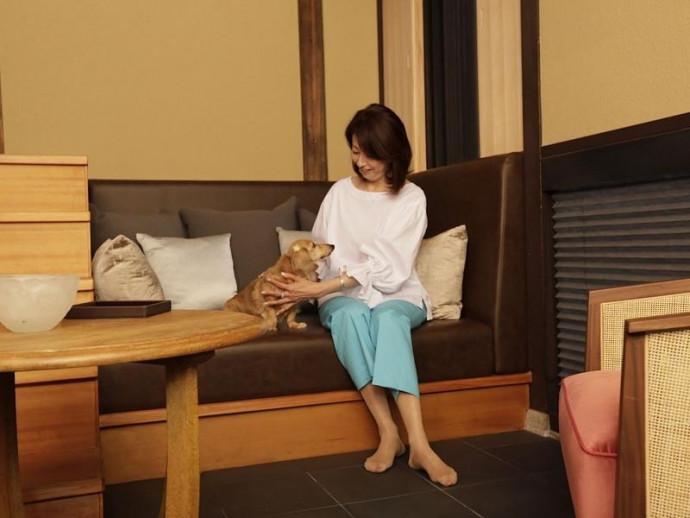 愛犬とのんびり京都旅!ラグジュアリーホテル『そわか(SOWAKA)』が誕生!