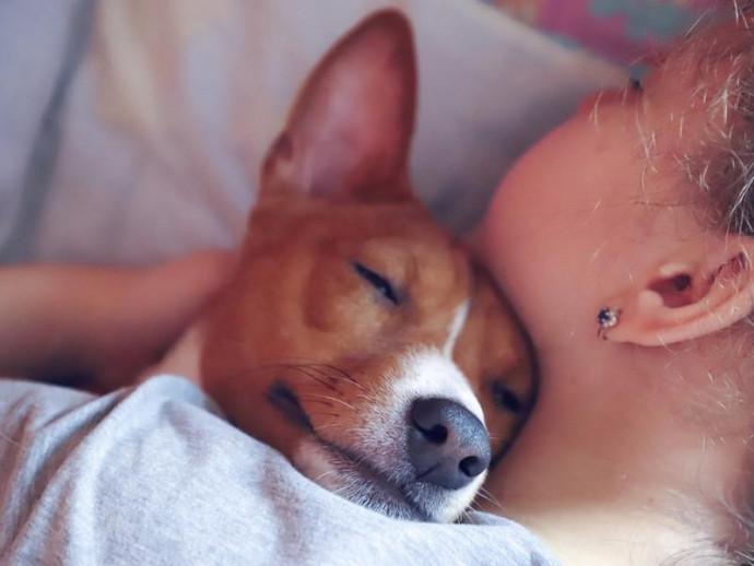 遺伝、環境、それとも飼い主?犬の性格を決める要素ってなに?