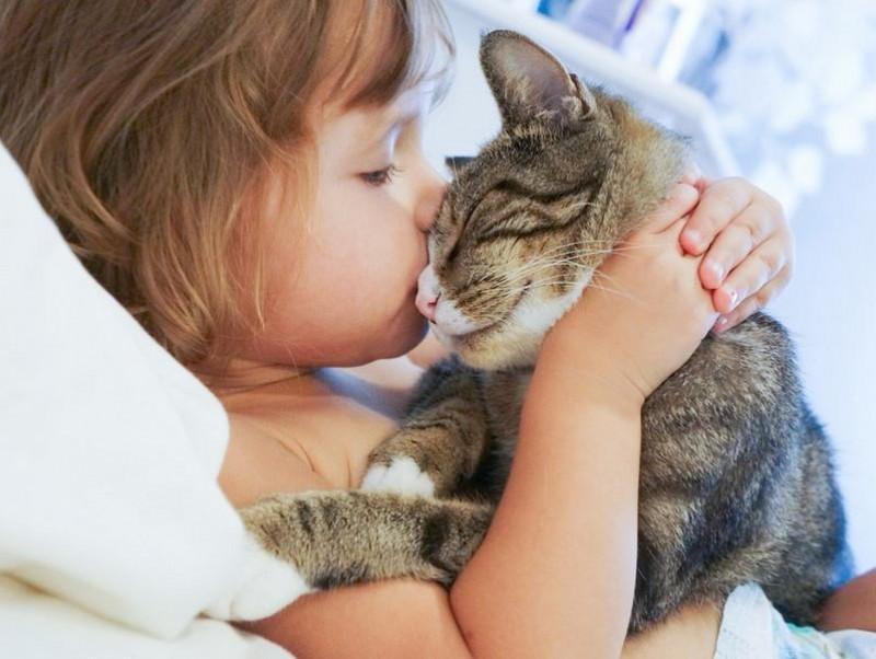 猫はマタタビよりも飼い主さんが大好き!愛猫が好きなものを知って素敵な関係作りを