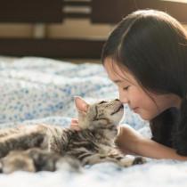 猫との添い寝は危険!? 猫の飼い主さんに知ってほしい「人獣共通感染症(ズーノーシス)」