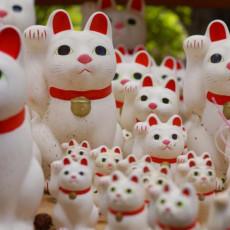9月29日は「招き猫の日」! 色ごとに違うご利益とは?