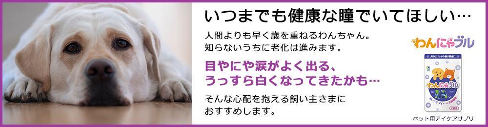 フッター(全ページ共通)バナー