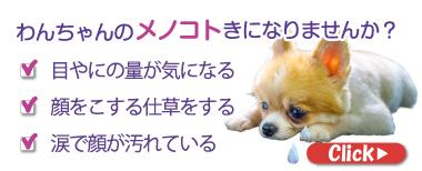 記事詳細バナー(2020年1月14日~)