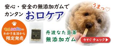 トップバナー(ガム2020年3月23日~)