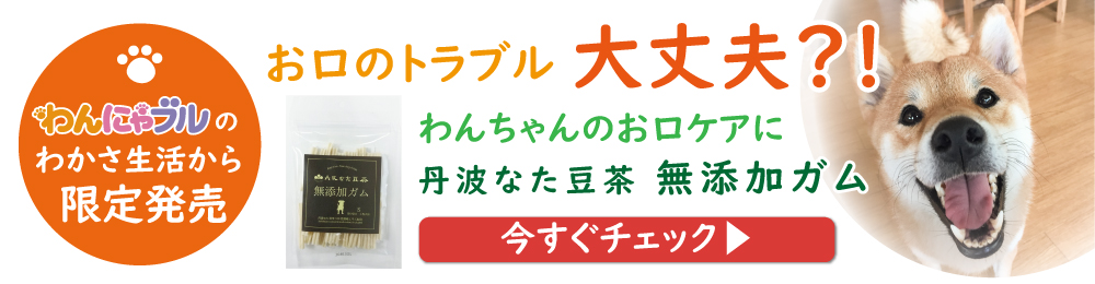 フッターバナー(ガム2020年3月23日~)