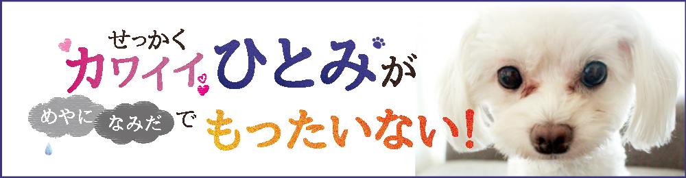 フッター(涙やけ訴求2021年6月1日~6月30日)