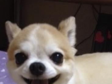 ぼくの笑顔素敵でしょ❣️