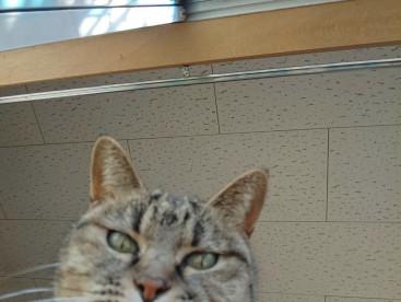 え、ちょっ、、今カメラ回ってんの?