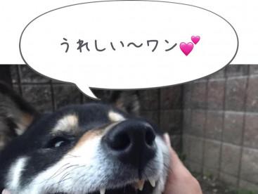可愛い💕笑顔でしょ☺️