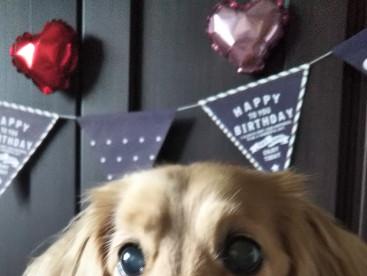 誕生日おめでとう😉❤️これからもよろしくね💕