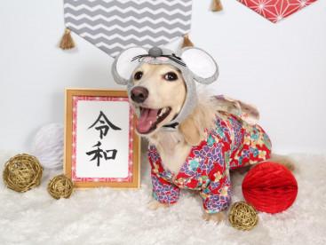 今年もよろしくお願いします!(^^)!