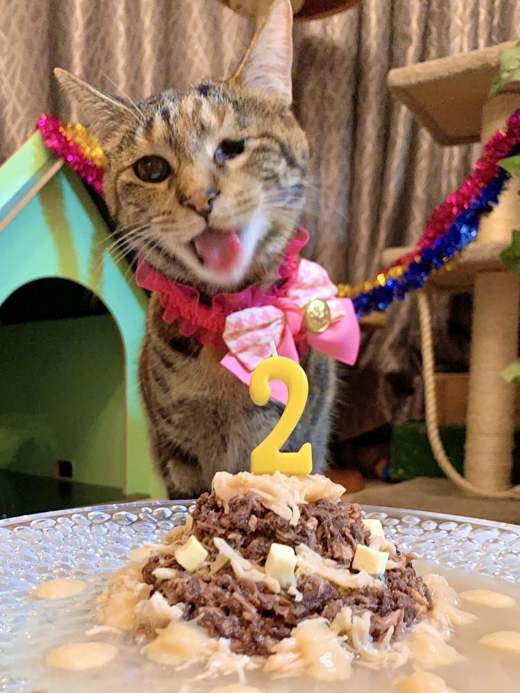 ももちゃん2歳のお誕生日おめでとう🎂