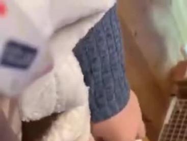 華、専用の猫布団は、最高❣️